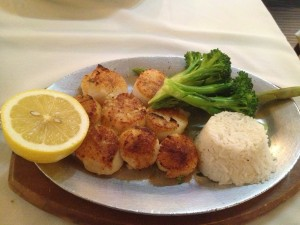 scallops in great neck